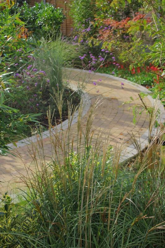 Sensory Garden - Hayes Ryan Landscape Architects on vegetable garden design layout, butterfly garden design layout, community garden design layout, rose garden design layout, container garden design layout, herb garden design layout, sensory garden drawing, english garden design layout,